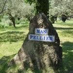 Mas Pellier Barjac Olivier et borne