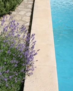 La piscine du Mas Pellier