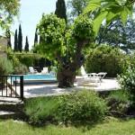 Pool Mas Pellier Ardèche Cévennes Provence Barjac Gard